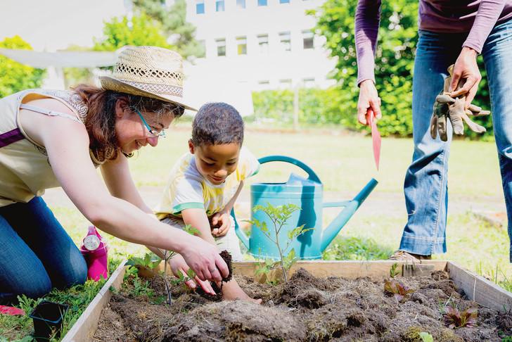 Atelier de jardinage Maison des familles Saint-Herblain