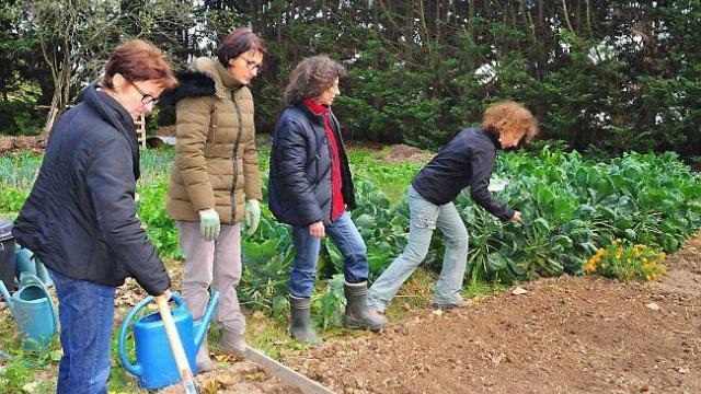Photo atelier jardinage biologique Les Potagers Essaimés octobre 2015
