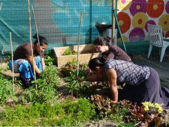 Atelier de jardinage association ROMSI Indre