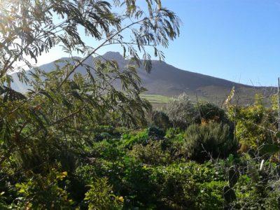 Bénévolat jardinage Maroc